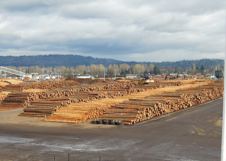 How Will COVID-19 Impact Timber Investments?